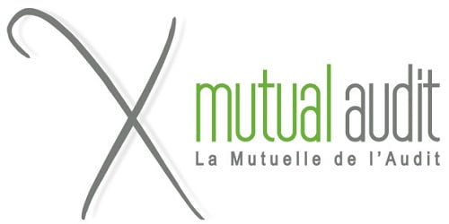 Mutual Audit Logo